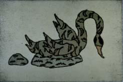 Black Swan - Boudnikov, Igor